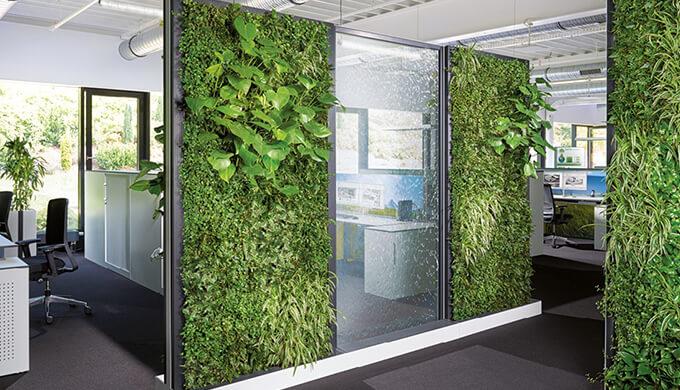 上海办公室绿化装修配置要求